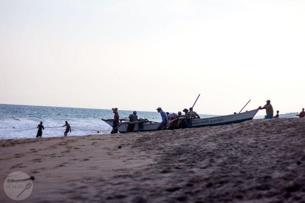 Tangalle - Turtle Bay, Sri Lanka