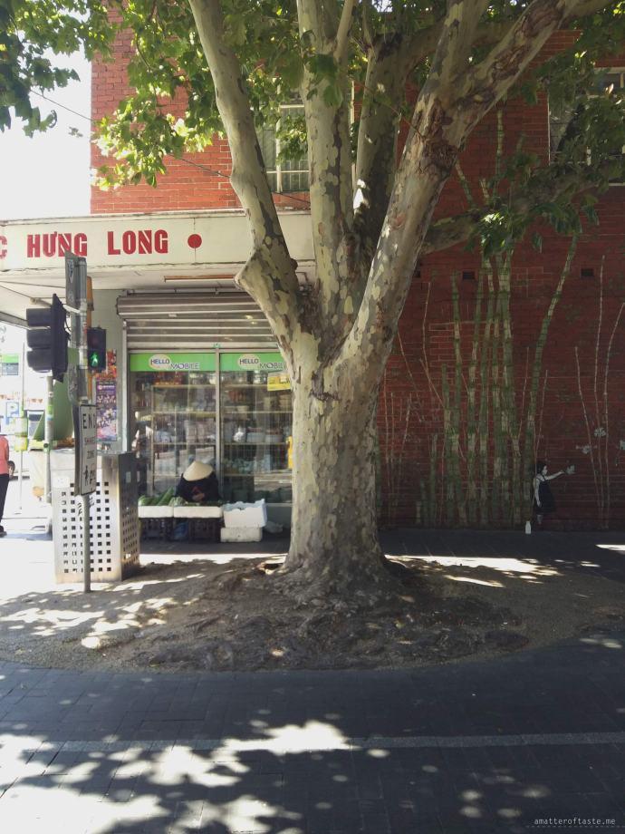 vietnam - Melbourne 2015