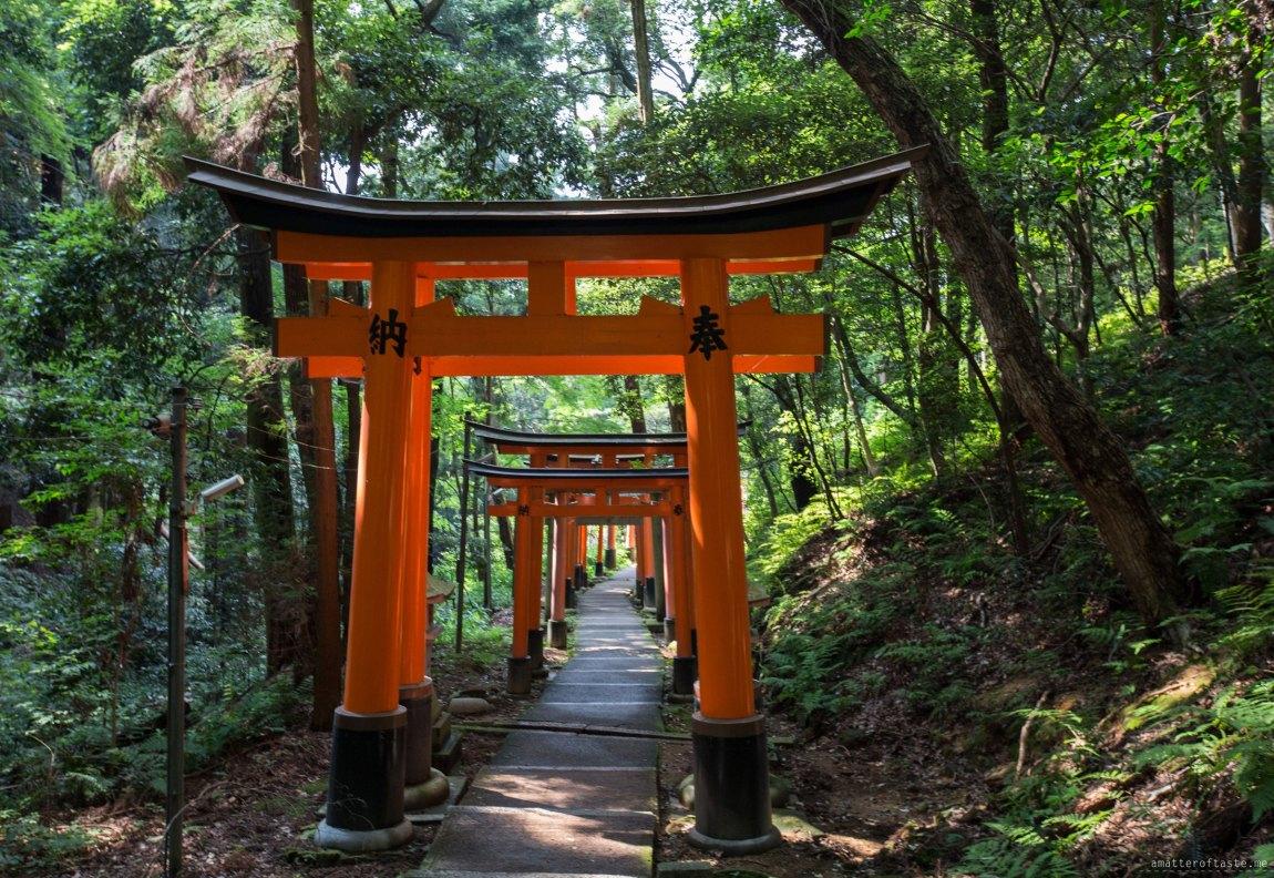 Fushimi Inari Torii Gates by a matter of taste