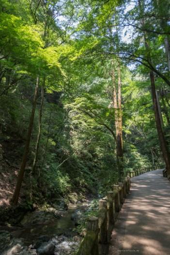 Minoo Park near osaka valley walk