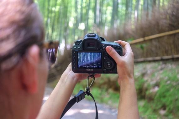 Arashiyama Kyoto bamboo forest