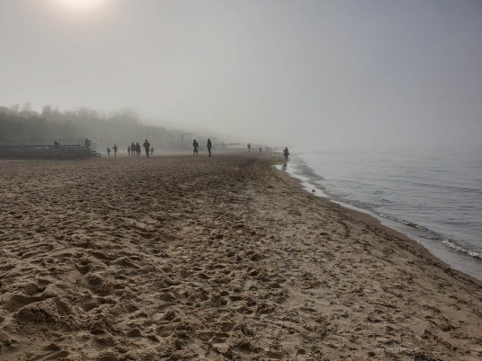 Foggy day at the beach was interesting. The visibility was maybe 10 metres on the beach and no more than 5 on the sea. It was eerie.