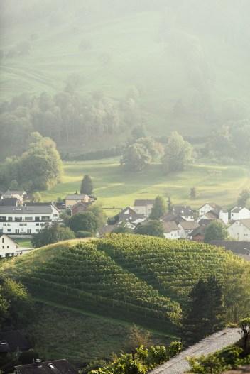 Liechtenstein road trip Balzers wine view