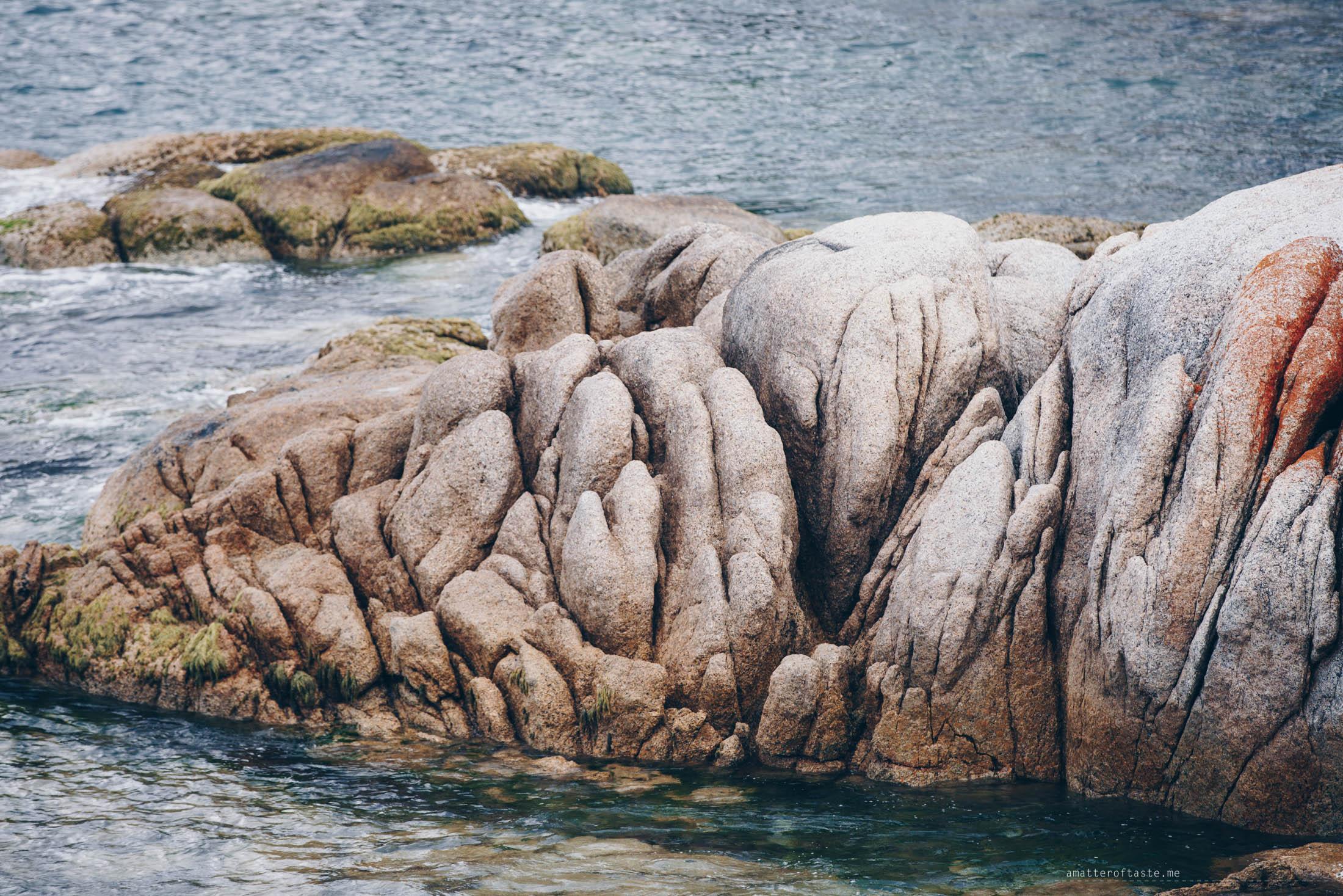 bicheno-coastal-walk-04