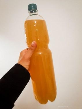 burcak bottle