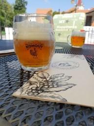 craft beer Czech Republic glass