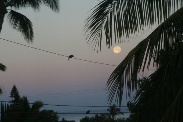 Super Moon Moonset Maui