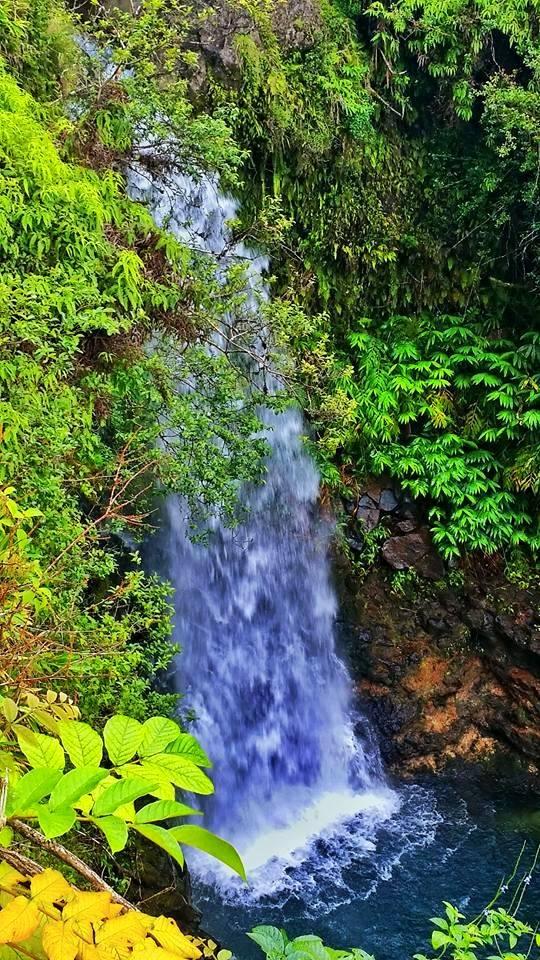 waterfall hana maui 2