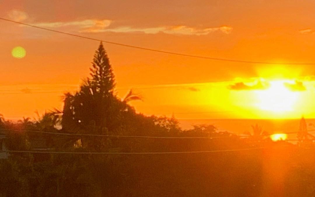 A Maui Blog 2020
