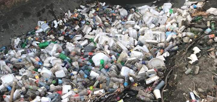 El grito de Manuel Alonso; un llamado de alerta por el Medio Ambiente