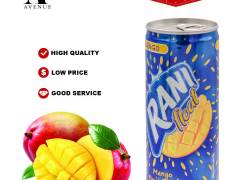 Rani Float Mango Fruit Drink 240ml