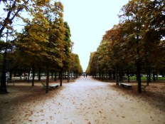Strolling back to the Louvre through the Tuilleries