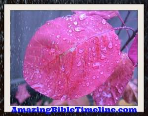 Did_It_Rain_Before_Noah's_Flood