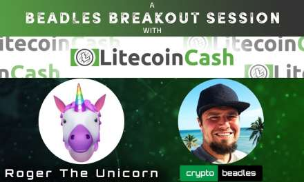 MUST WATCH LiteCoin Cash Interview, Founder addresses Crypto Scam Claims (LCC)