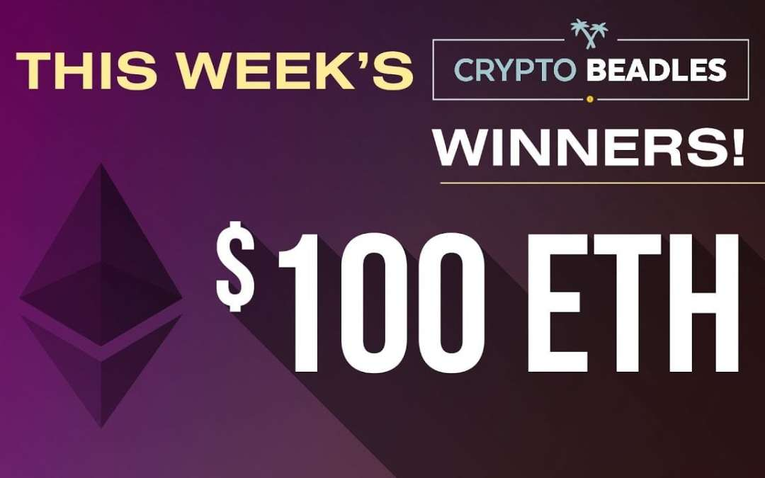 VOB (Crypto) $700 in Winners Picked and Updates