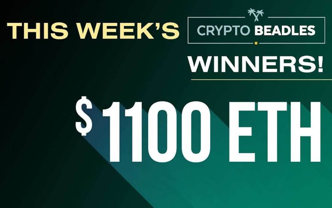 Campfire, BCHABC, BCHSV, Crypto updates and $1100 in Winners Chosen