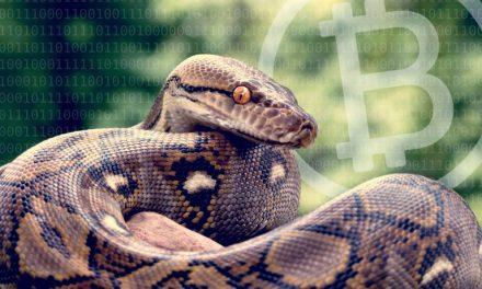 New Bitcoinpython Node Is 100X Faster Than Previous Python Libraries