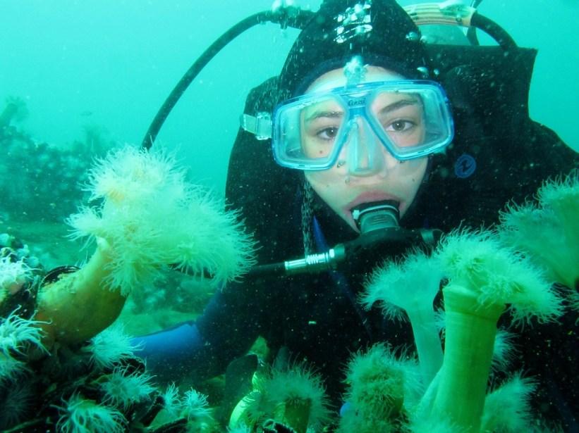 diving-975510_960_720