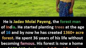 Jadav Payeng the Forest Man of India