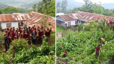 Now This How Nagaland School Kids Inspire the Whole Village by Grow Their Own Organic Mid-Day Meals and waste management