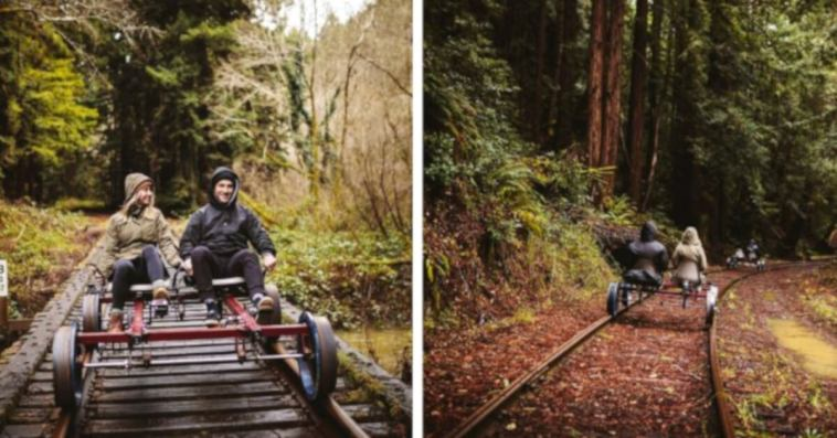 You Can Pedal Through The Redwood Forest On Rail Bikes In Northern California