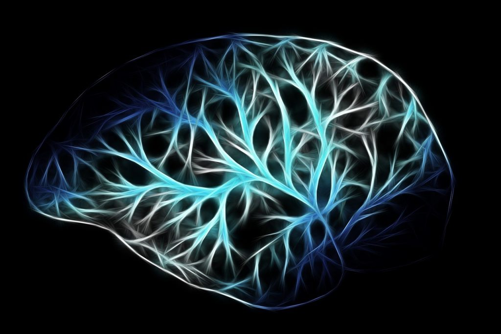 The brain is mostly water, just like the rest of the human body