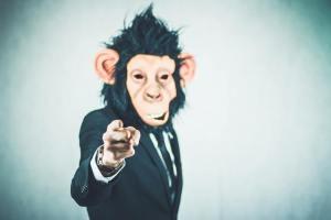 Amazon mastermind hurdle 1- Facebook Monkeys