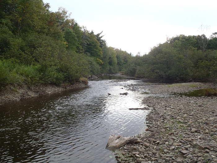 Trout fishing on trout brook in baxter state park maine for Maine state fish