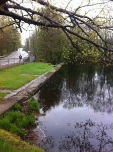 View of Christian fishing from the retaining wall on Wilcox Pond