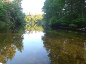 Another general view of the Tenny River. Notice how shallow the water is.