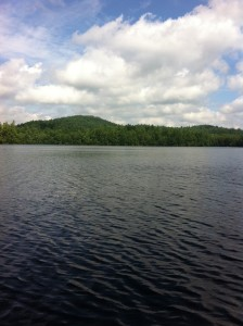 General view of Perley Pond