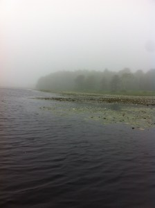 View of the channel running through the floating vegetation in Wat-Tuh Lake