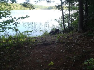 Access point to James Pond