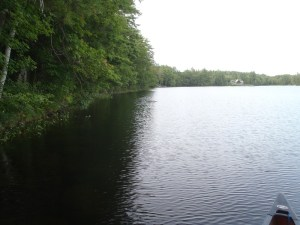 Another view of the western shoreline on James Pond. Note the sparse largemouth bass habitat.