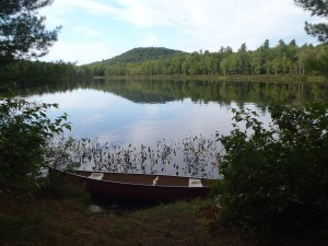 View from the access point to Webber Pond