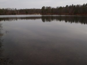 General view of Otter Pond #2