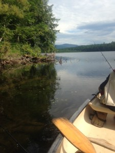 I caught a small pickerel and Christian hooked but lost a largemouth bass in this wood