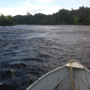 This water is too swift, linear, and shallow to hold smallmouth bass