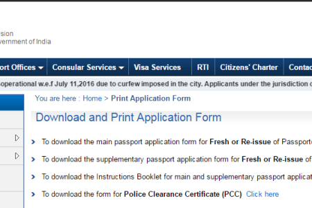 Free Forms 2019 Online Passport Application Form Free Forms