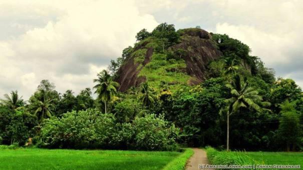 Dambadeniya Rock Fortress