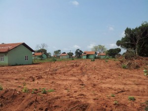 Houses of one of the alleged illegal settlements in the Wilpattu region