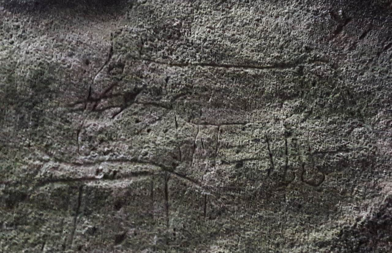 Engravings of Elephants on the cave wall at the Dorawaka Caves Prehistoric Site