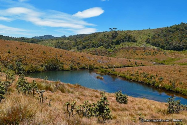 Leg of Mutton pool on the trail to Bakers Falls @ Horton Plains National Park