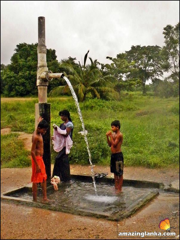 The flowing artesian well - Wahawa Hot Springs