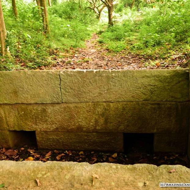 Well preserved Bisokutuwa (granite valve pit) before the cobra guardstone at Urusita Wewa Reservoir