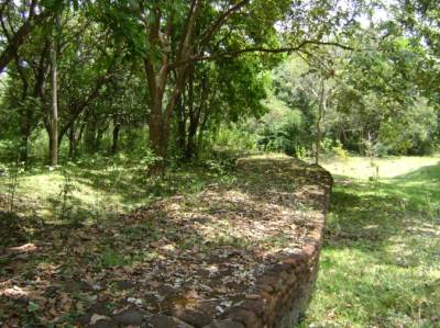 Rampart or wall covering the ground at archaeological site at Parakramapura - Padaviya