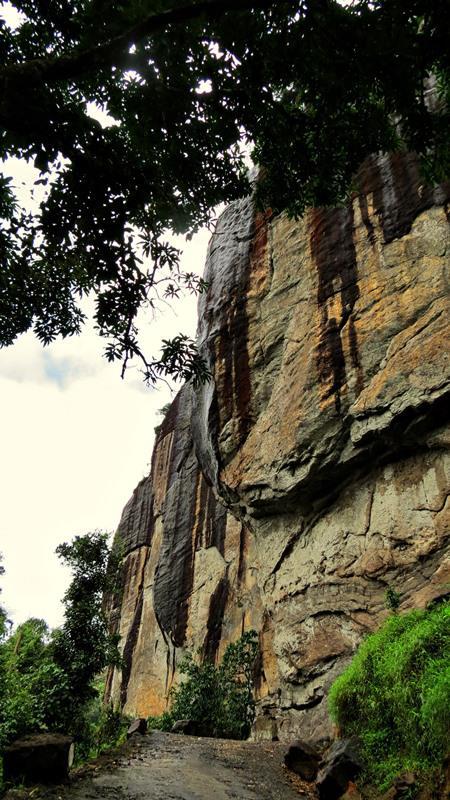 Dripping Rock at Halgolla Tea Estate