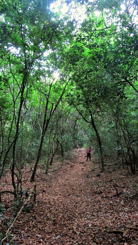 Route towards the larger stupa at the top of the mountain - Upulwehera Archaeological Site