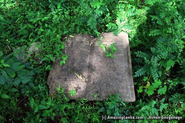 Ruins of Maha Andarawewa Archaeological Reserve / Andarawewa Walagamba Rajamaha Viharaya