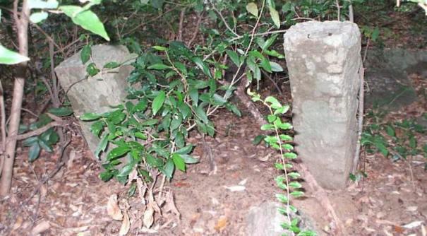 Ruins of Habagama Gal Palama